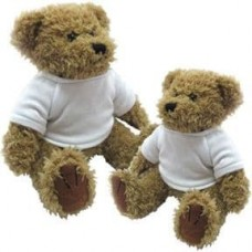 Teddy Bear with printed T-Shirt