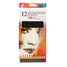12 Watercolour Artist Pencils